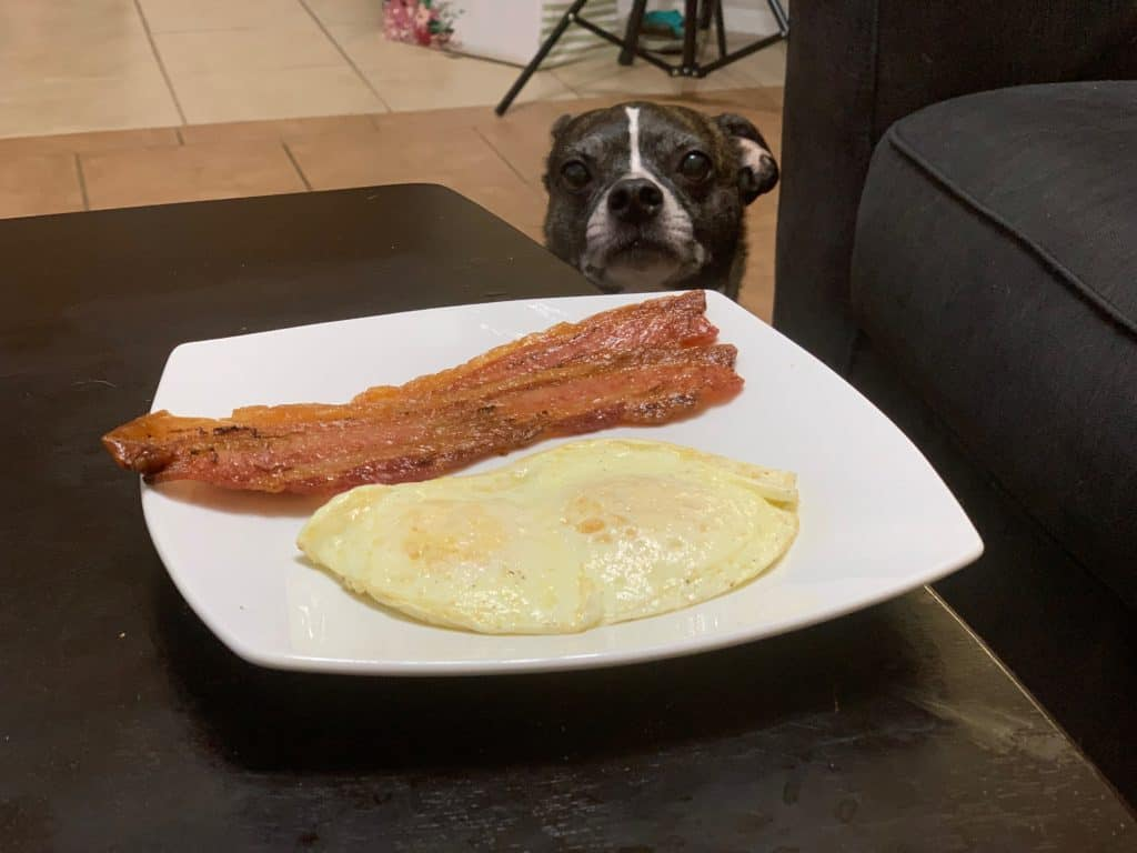 Dorian is staring at a plate of bacon and eggs