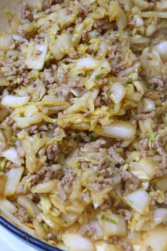 Sauteed cabbage and ground pork